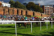 Horse Race Track Railing: Importance It Holds Along With Track Bias