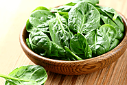 Try These Delicious Spinach Roll Ups Lasagna - Free Medical Health