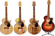 ULTIMATE GUITAR - Find The Best Acoustic Guitar