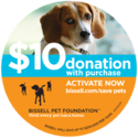 Help for Homeless Pets | Donate Rescue Pets | The BISSELL Pet Foundation