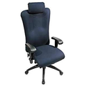 Perch Ergonomic Office Chair with Headrest - High Back