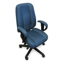 Perch Executive Chair