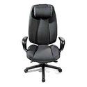 Perch Executive Chair - with Velcro Headrest
