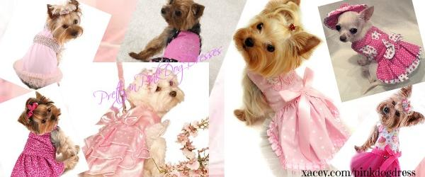 Headline for Pretty in Pink Dog Dresses