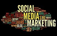 Why Social Media Is Important for Business Marketing in 2019 Udaipur Rajasthan | Best Software Development Company in...