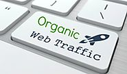 Ultimate Guide to Organic Web Traffic