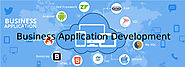 Best Business Application Development Services Provider Company