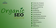 Organic SEO services in Kolkata and its benefits for your brand