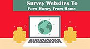 Top 4 Survey Websites To Earn Money From Home in India