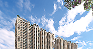 Get luxurious, elegant and comfortable apartments in Noida at affordable price