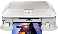 Canon Printer Offline Support