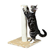 Buy Parla Scratch Post Online UK