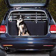 Buy Car Safety Grid Dog Guard Online UK