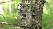 New Trail Camera Reviews