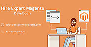 Hire Magento eCommerce Programmer For your Ecommerce Store