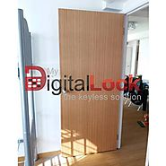 Veneer bedroom door