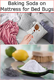 Baking Soda on Mattress for Bed Bugs | Baking Soda Uses and DIY Home Remedies.