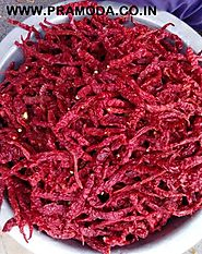 Byadgi Chili Exporter, Supplier, Manufacturer in India