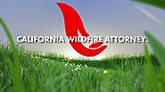 Daylight intro California Wildfires Attorneys