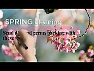 Spring Cleaning in Adelaide: The Ultimate Tips & Tricks