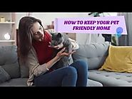 Best Home Organising and Cleaning Tips For Pet Lovers
