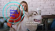 The Art of Keeping a House Clean with a Dog