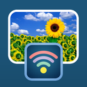 Simple Transfer - Wireless Photo & Video Backup, Sync & Share