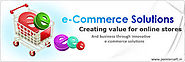 Get Affordable eCommerce Solutions in UAE | Theitvalley