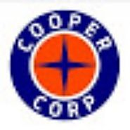 Comprehensive range of engine components - Cooper Corp - Medium