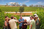 Private Winery Tours Yarra Valley - Yarra Tours