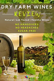 Dry Farm Wines Review: Where to Buy Natural Low Carb Wines?