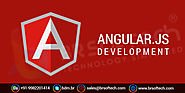 AngularJS Web Development