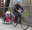 Bike Trailers for Dogs