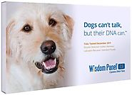Mars Veterinary DNA Test Kit
