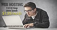 Mylighthost is one of the best web hosting service providers that offer excellent services at low price. It has attra...