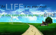 Life is an experiment. The more experiments you make the better