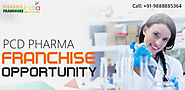 Why Own a Pcd Pharma Franchise is better than Marketing Job