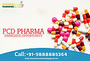 What are the Parameters to Choose PCD Pharma Franchise Company in India?