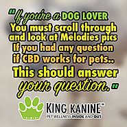 Everything for Every Pet at King Kanine