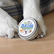 What Is The Reason Behind Huge Demand of King Kanine's CBD Paw Balm