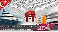 What Are the Most Profitable Investments in Turkey?