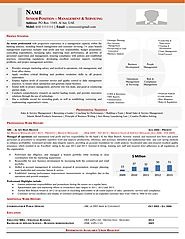 Executive Resume Writing Services, CV Writing Services, Federal Resume Writing Services, Military Resume Writers, Lin...