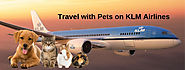 KLM Airlines Pet Policy