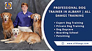 Professional Dog Trainer In Albany | All Dawgs Training | Visual.ly