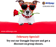 Special Offers on Dawggie Daycare | edocr