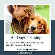 Albany Dog Trainer Program