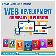 Website Logo Designing and Development Company in Florida