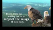 Gr8 Motivational Clip - Even Eagles needs a Push. - YouTube