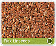 Organic Flax Seeds Exporters, Manufacturers & Suppliers from India