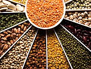 Lentil Suppliers | Beans Manufacturers, Exporters | Organic Products India